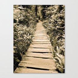 Endless Path Canvas Print