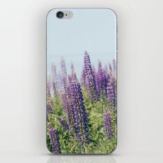Lupin 1 iPhone & iPod Skin