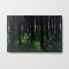 Parallel Forest Metal Print