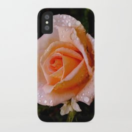 Dewdrop Rose iPhone Case