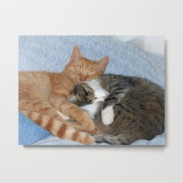 Sleeping Sweeties Metal Print