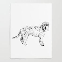 Labradoodle/Goldendoodle Ink Drawing Poster