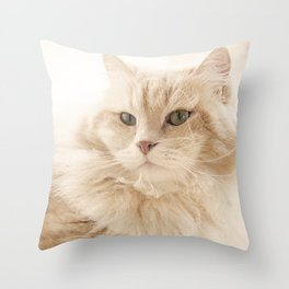 Siberian cat on his loved cat tree Throw Pillow