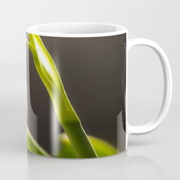 Beautiful Snowdrop  Coffee Mug
