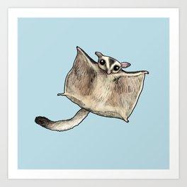Sugar Glider Art Print