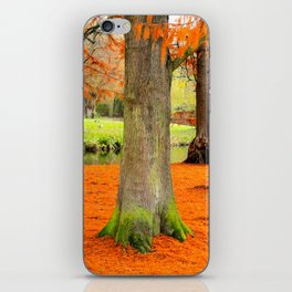 Amsterdam in the Fall pt 3 iPhone Skin