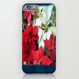 Mixed color Poinsettias 1 Blank P6F0 iPhone Case