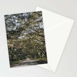 Wormsloe Live Oak Avenue - Savannah II Stationery Cards