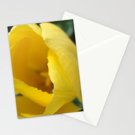 Yellow Tulip Stationery Cards
