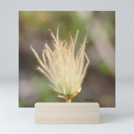 Apache Plume Mini Art Print