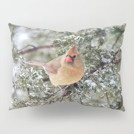 Frosty Female Cardinal Pillow Sham