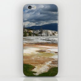 Grassy Spring View iPhone Skin