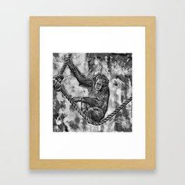 AnimalArtBW_Chimpanzee_20170901_by_JAMColorsSpecial Framed Art Print