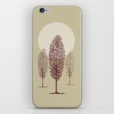 Terra di siena iPhone & iPod Skin