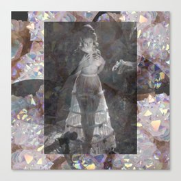 Gems and Gauze Canvas Print