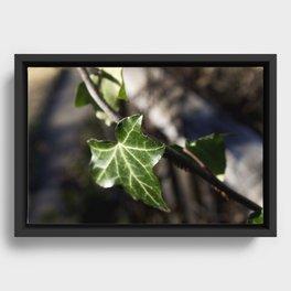 Little Emerald Framed Canvas