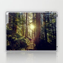 Hidden trail Laptop & iPad Skin