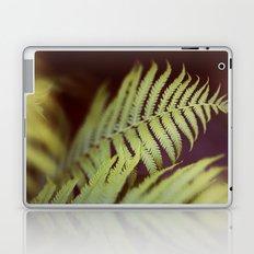 Fern 2 Laptop & iPad Skin