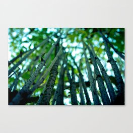 Stalks to the Sky Canvas Print