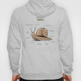Anatomy of a Snail Hoody