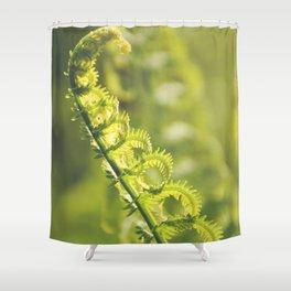 AFE Fern Shower Curtain