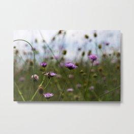 Bee Flowers Metal Print