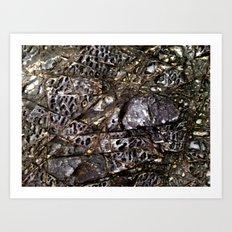 HeadlandRock17 Art Print