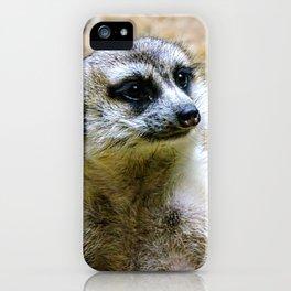 Meerkat vibin' iPhone Case
