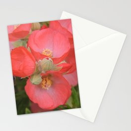 Apricot Mallow Blossoms Stationery Cards
