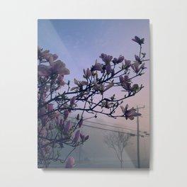 Magnolia Morning Metal Print