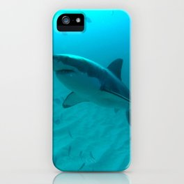Great white shark, Carcharodon carcharias iPhone Case