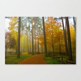 The golden forest Canvas Print