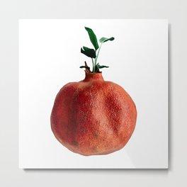 Pomegranate tree  Metal Print