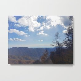 Into the Mountains Metal Print