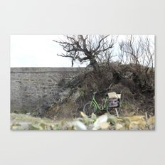 The lost bicycle Canvas Print