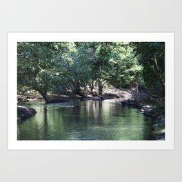 Tranquil Stream Art Print