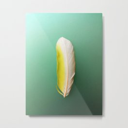 Single, Pale Yellow Feather Metal Print
