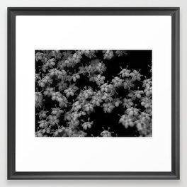 Black Stars Framed Art Print
