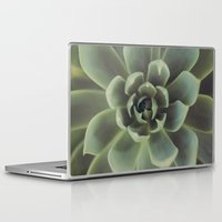 succulent Laptop & iPad Skins featuring Succulent by Andrea Hurley