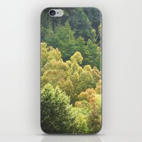 forrest iPhone & iPod Skins featuring Forrest Green by Bizzack Photography