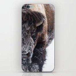 Yellowstone National Park: Lone Bull Bison iPhone Skin