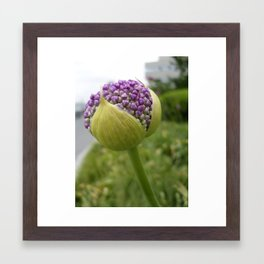 Brimming With Possibility Framed Art Print