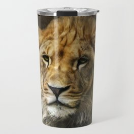 The young lion Travel Mug