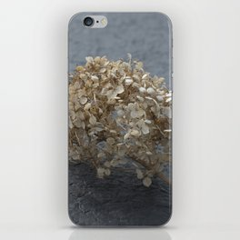 Blossoms on Blacktop iPhone Skin