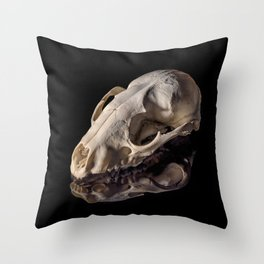 Raccoon Skull Reflection Throw Pillow