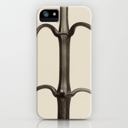 Karl Blossfeldt - Impatiens glandulifera iPhone Case