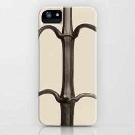 Karl Blossfeldt - Impatiens glandulifera iPhone Case
