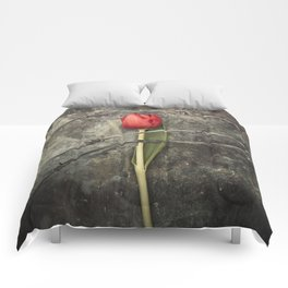 Tulip and barbed wire Comforters