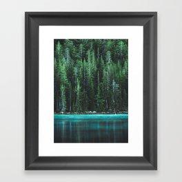 Forest 3 Framed Art Print