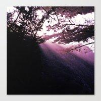 big sur Canvas Prints featuring Big Sur by Kelley Bennett